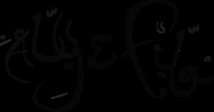 Aly & Fila - Logo